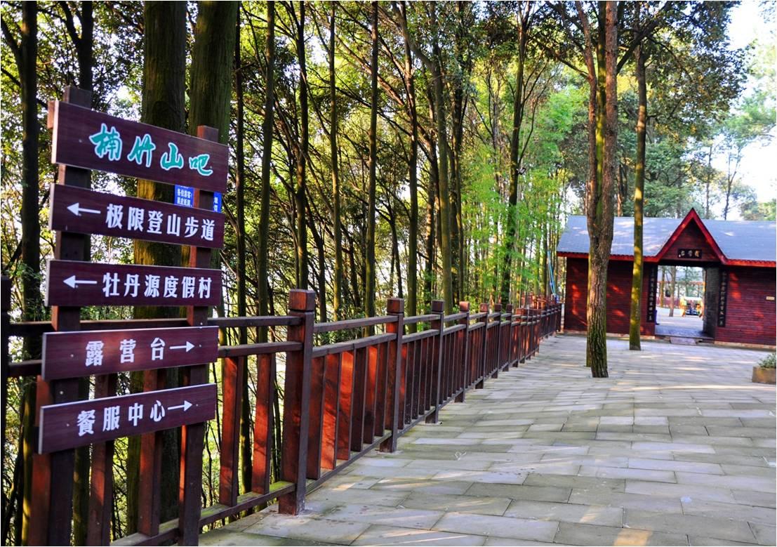 最幽雅 垫江楠竹山森林公园